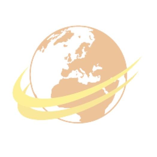Remorque 2 essieux bachée à ridelles grise et bleue chassis rouge